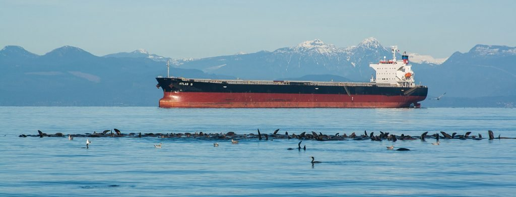 Chamber of Shipping gives National Anchorage Initiative a failing grade