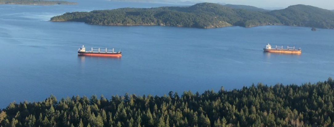Drone footage of freighters around Thetis Island BC